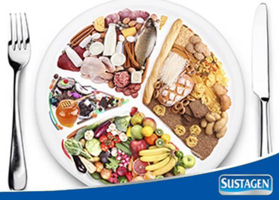 Makan Seimbang untuk Gizi Optimal