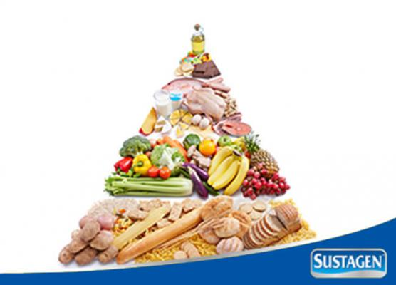 Mengenal Piramida Makanan